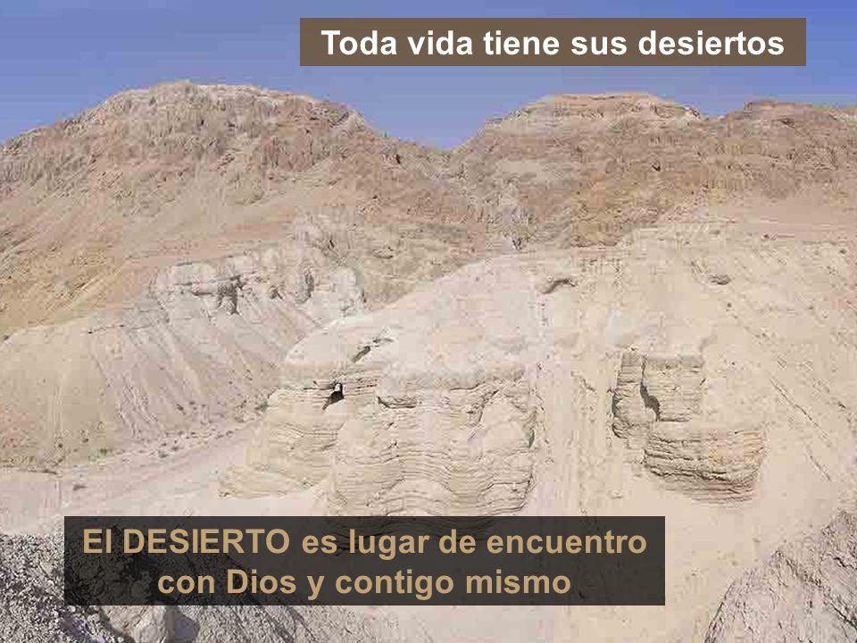 Toda vida tiene sus desiertos