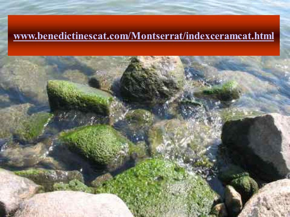 www.benedictinescat.com/Montserrat/indexceramcat.html