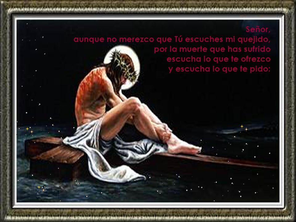 Señor, aunque no merezco que Tú escuches mi quejido, por la muerte que has sufrido. escucha lo que te ofrezco.