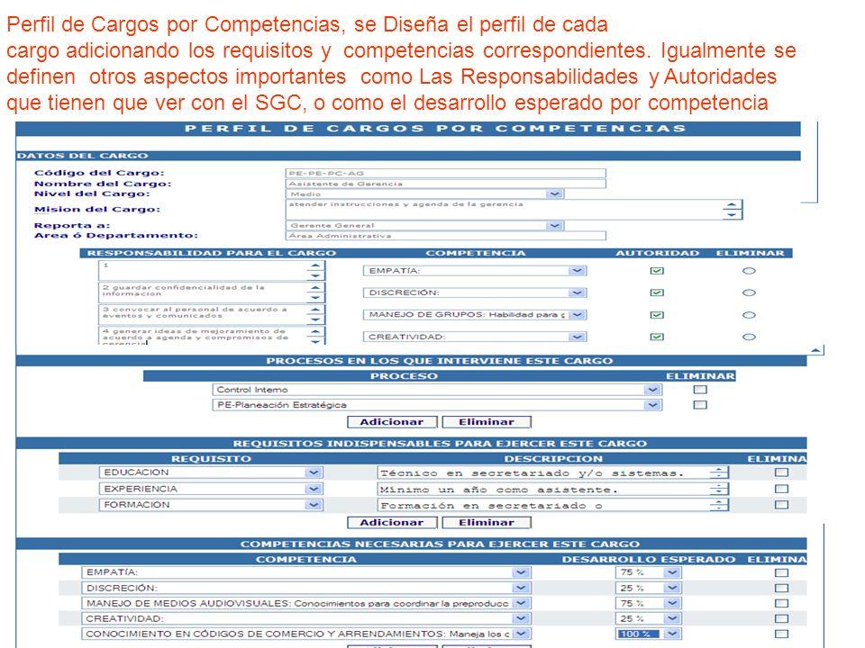 Perfil de Cargos por Competencias, se Diseña el perfil de cada