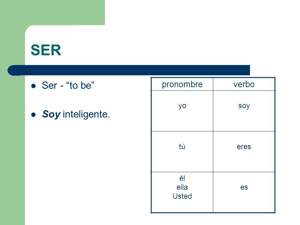 SER Ser - to be Soy inteligente. pronombre verbo yo soy tú eres él