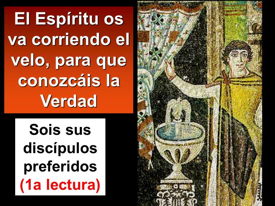 El Espíritu os va corriendo el velo, para que conozcáis la Verdad