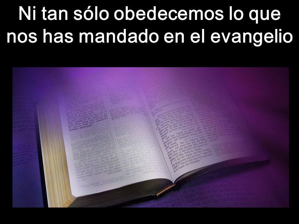 Ni tan sólo obedecemos lo que nos has mandado en el evangelio