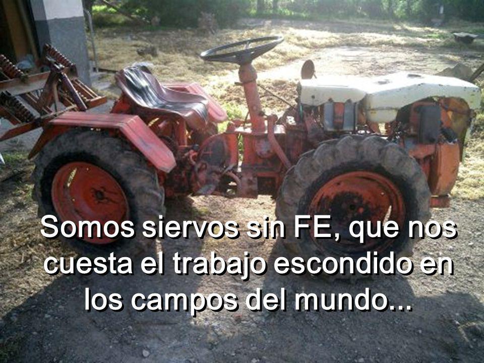 Somos siervos sin FE, que nos cuesta el trabajo escondido en los campos del mundo...