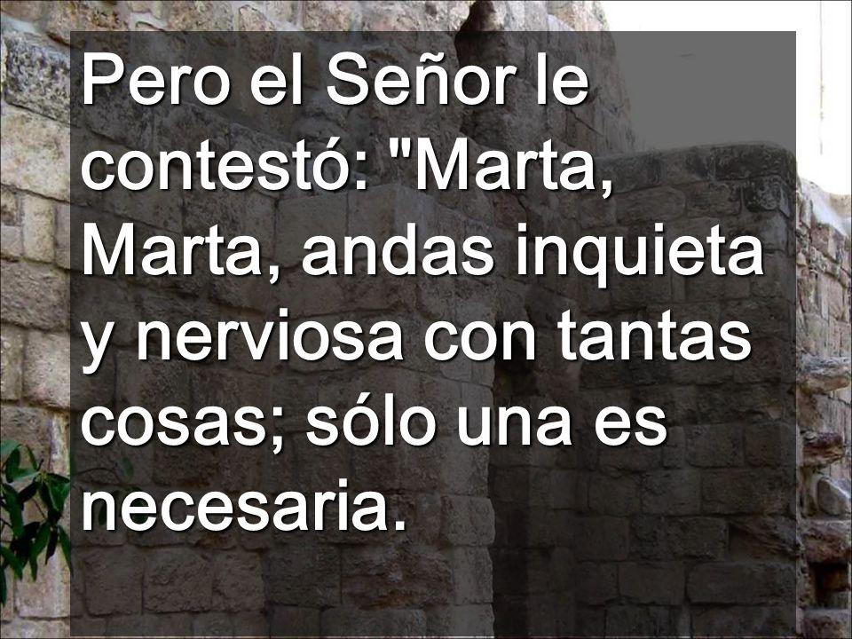 Pero el Señor le contestó: Marta, Marta, andas inquieta y nerviosa con tantas cosas; sólo una es necesaria.