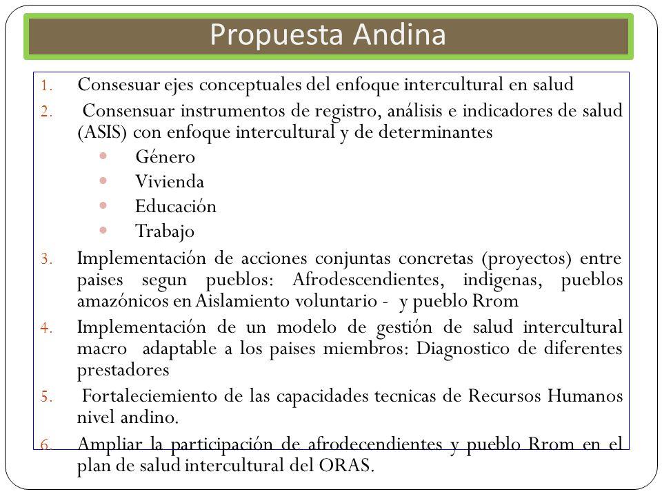 Propuesta Andina Consesuar ejes conceptuales del enfoque intercultural en salud.