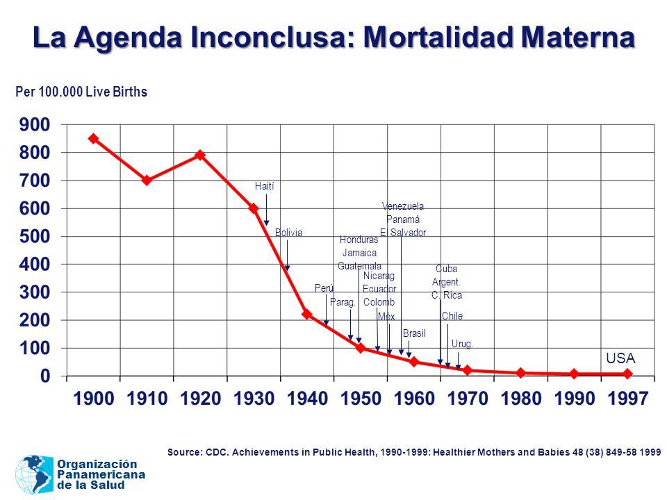 La Agenda Inconclusa: Mortalidad Materna