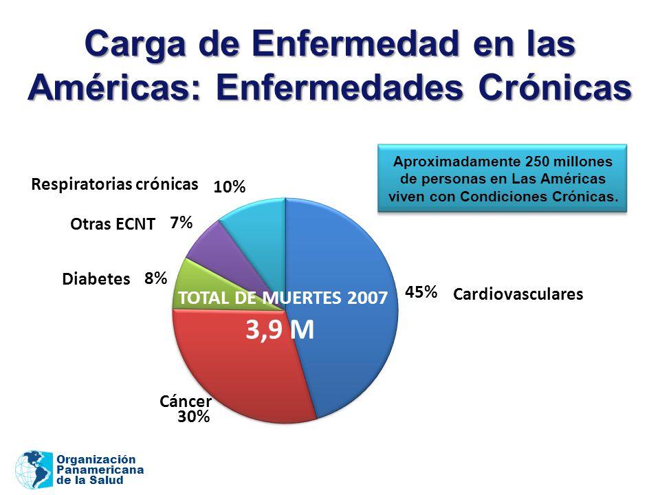 Carga de Enfermedad en las Américas: Enfermedades Crónicas