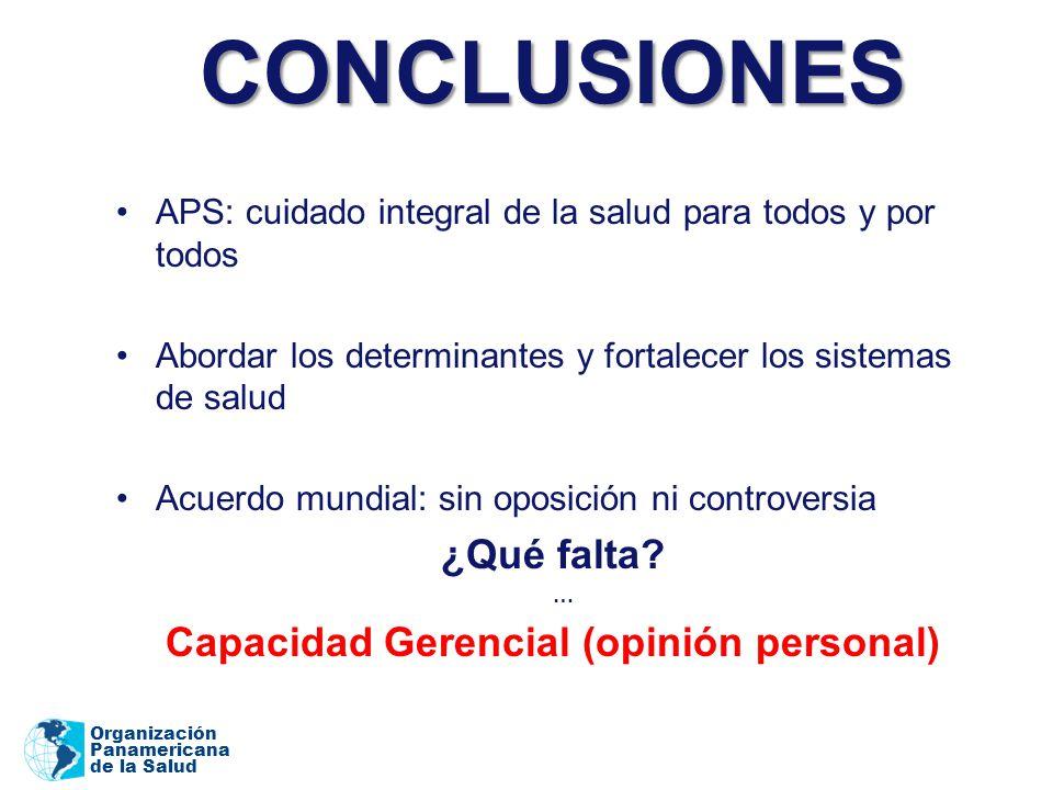 Capacidad Gerencial (opinión personal)