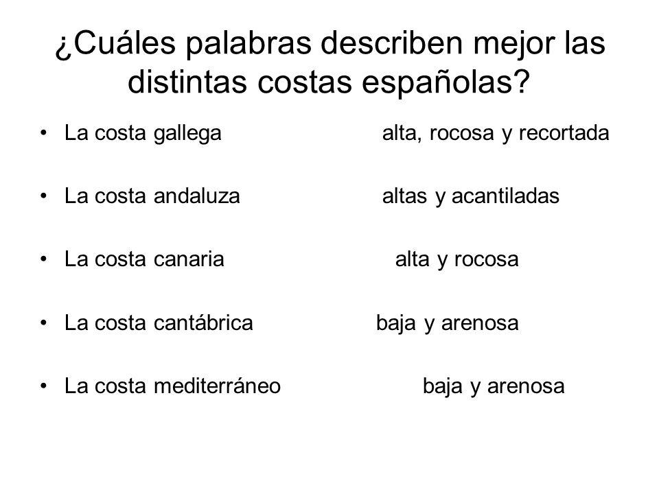 ¿Cuáles palabras describen mejor las distintas costas españolas