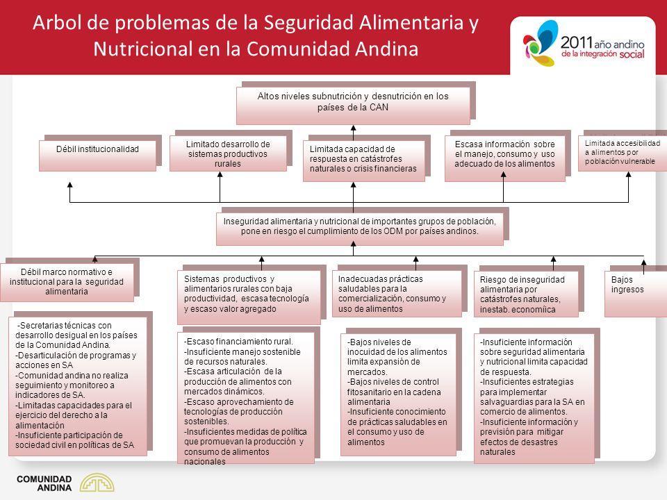 Arbol de problemas de la Seguridad Alimentaria y Nutricional en la Comunidad Andina