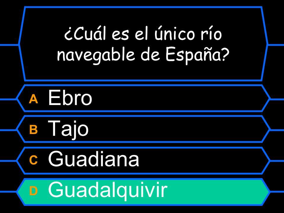 ¿Cuál es el único río navegable de España