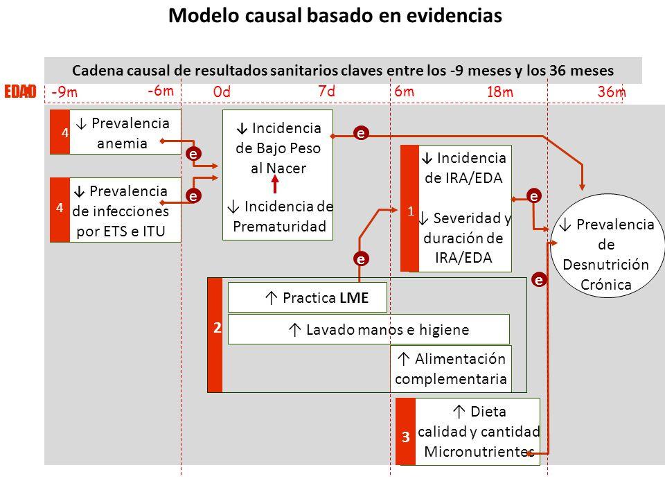 Modelo causal basado en evidencias
