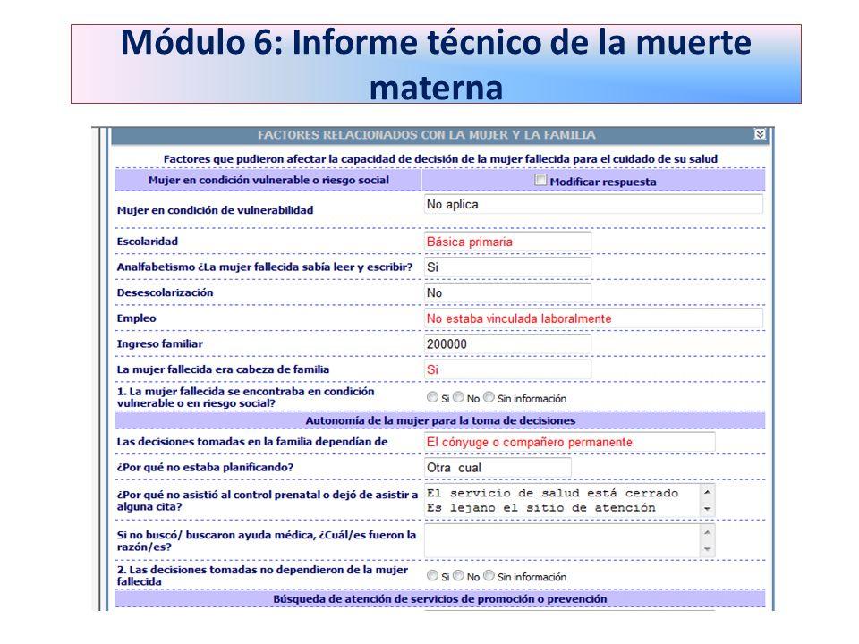 Módulo 6: Informe técnico de la muerte materna