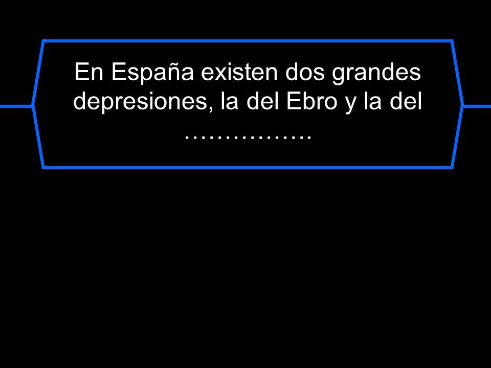 En España existen dos grandes depresiones, la del Ebro y la del …………….