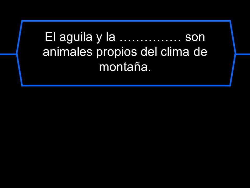 El aguila y la …………… son animales propios del clima de montaña.