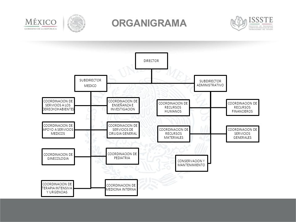 ORGANIGRAMA DIRECTOR SUBDIRECTOR MEDICO