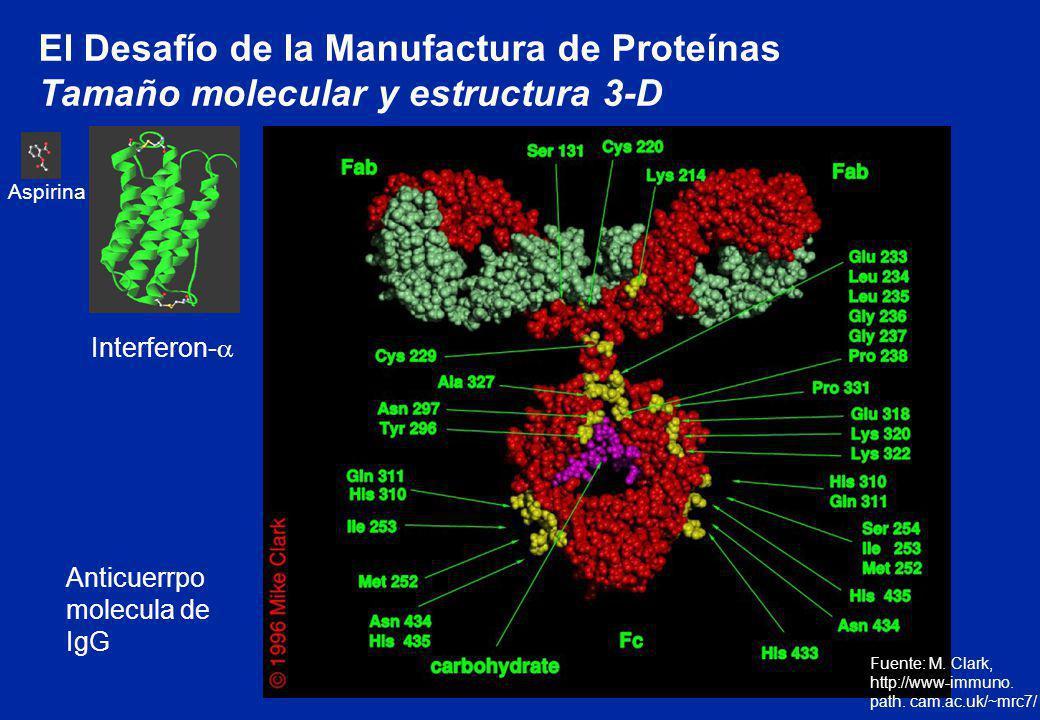 El Desafío de la Manufactura de Proteínas