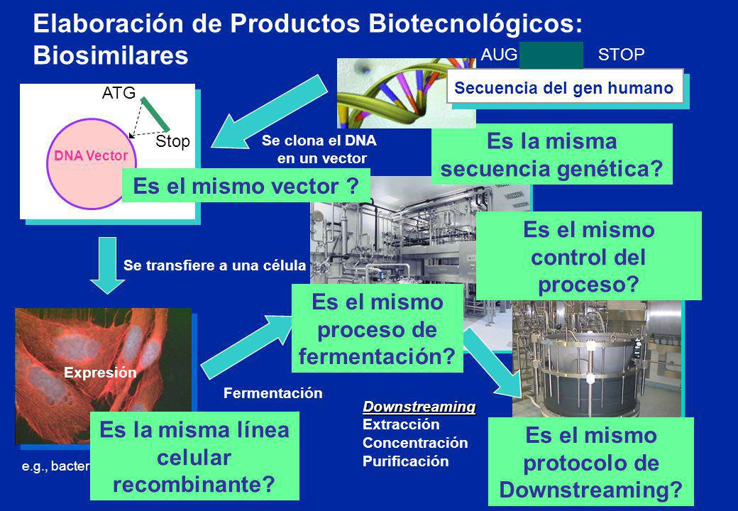 Elaboración de Productos Biotecnológicos: Biosimilares