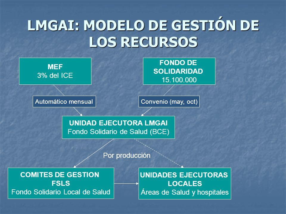 LMGAI: MODELO DE GESTIÓN DE LOS RECURSOS