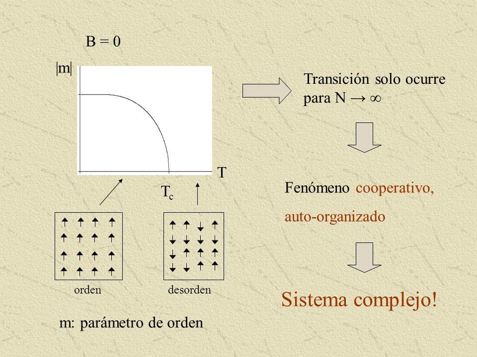 Sistema complejo! B = 0 |m| Transición solo ocurre para N → ∞ T