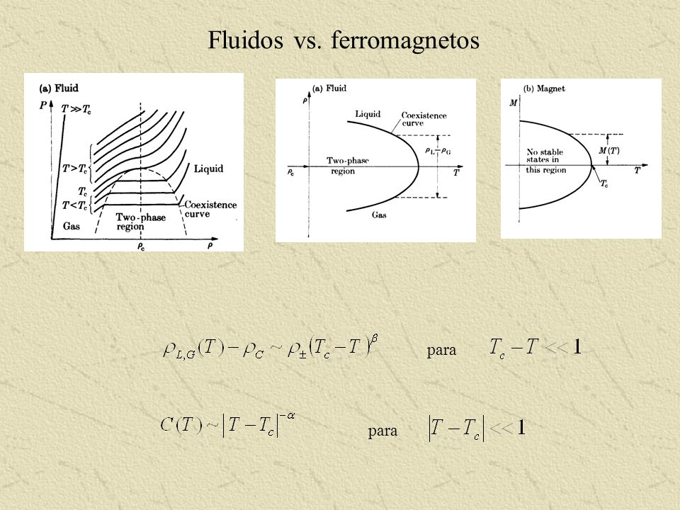 Fluidos vs. ferromagnetos