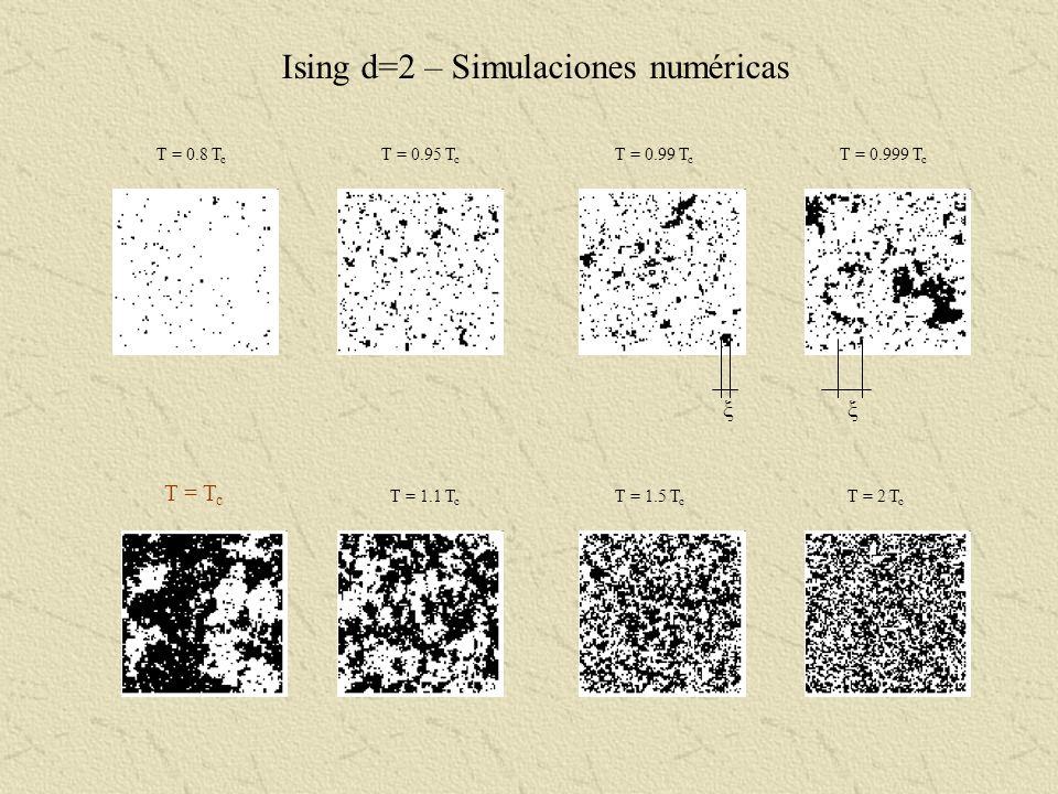 Ising d=2 – Simulaciones numéricas