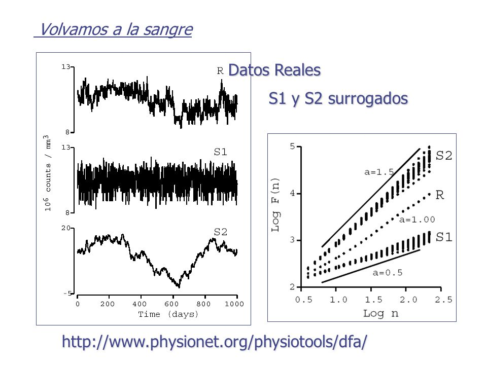 Volvamos a la sangre Datos Reales S1 y S2 surrogados http://www.physionet.org/physiotools/dfa/