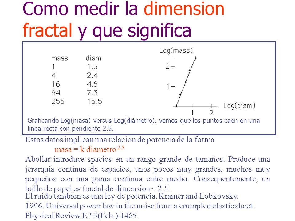 Como medir la dimension fractal y que significa