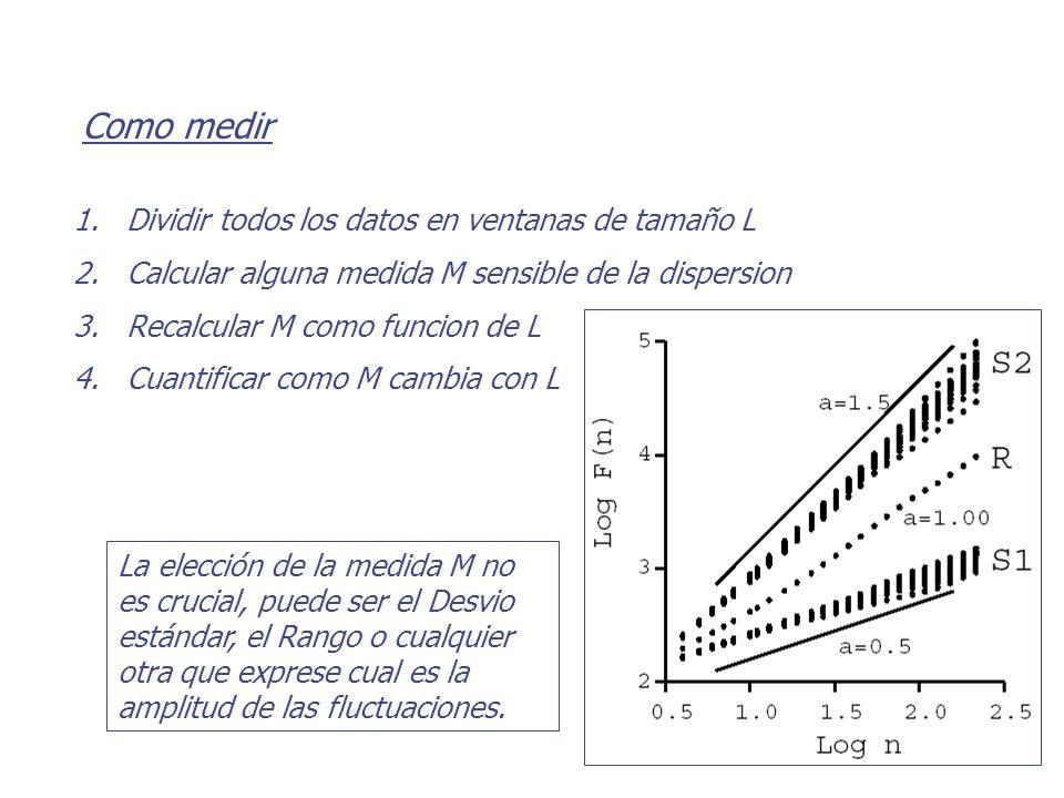 Como medir Dividir todos los datos en ventanas de tamaño L
