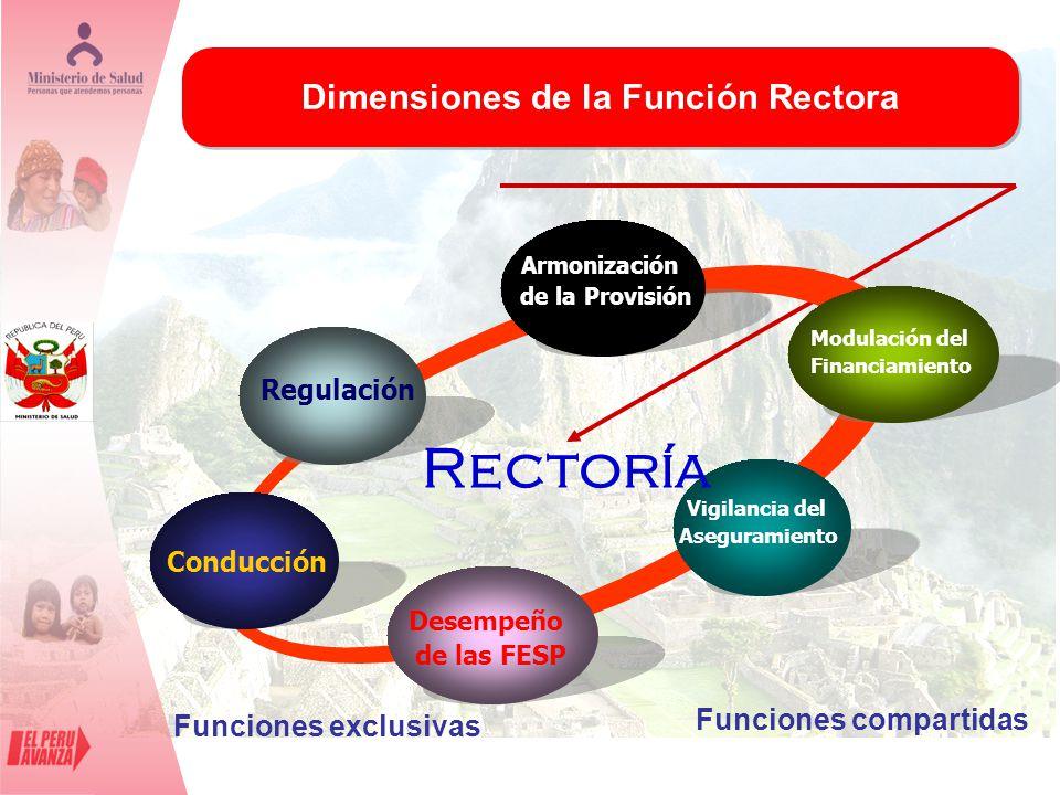 Dimensiones de la Función Rectora Funciones compartidas