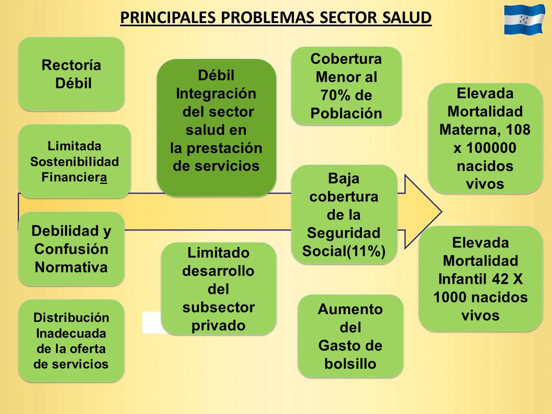 PRINCIPALES PROBLEMAS SECTOR SALUD