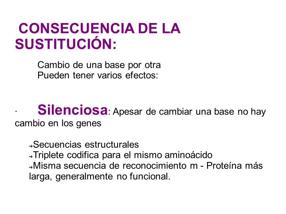 CONSECUENCIA DE LA SUSTITUCIÓN: