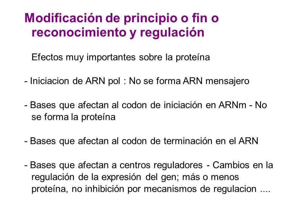 Modificación de principio o fin o reconocimiento y regulación