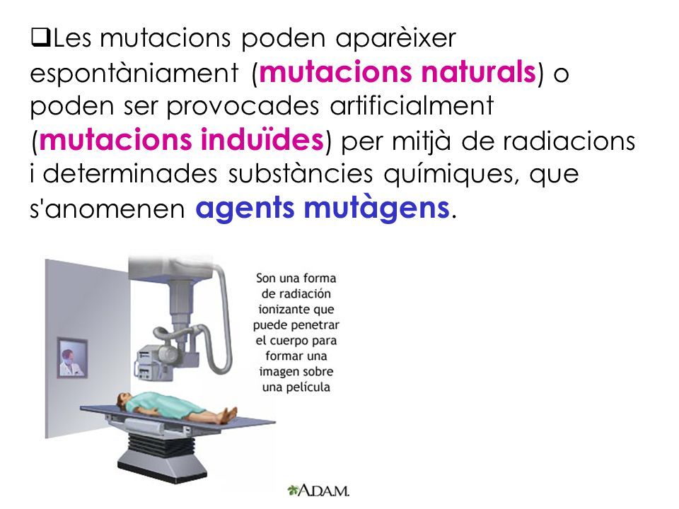 Les mutacions poden aparèixer espontàniament (mutacions naturals) o poden ser provocades artificialment (mutacions induïdes) per mitjà de radiacions i determinades substàncies químiques, que s anomenen agents mutàgens.