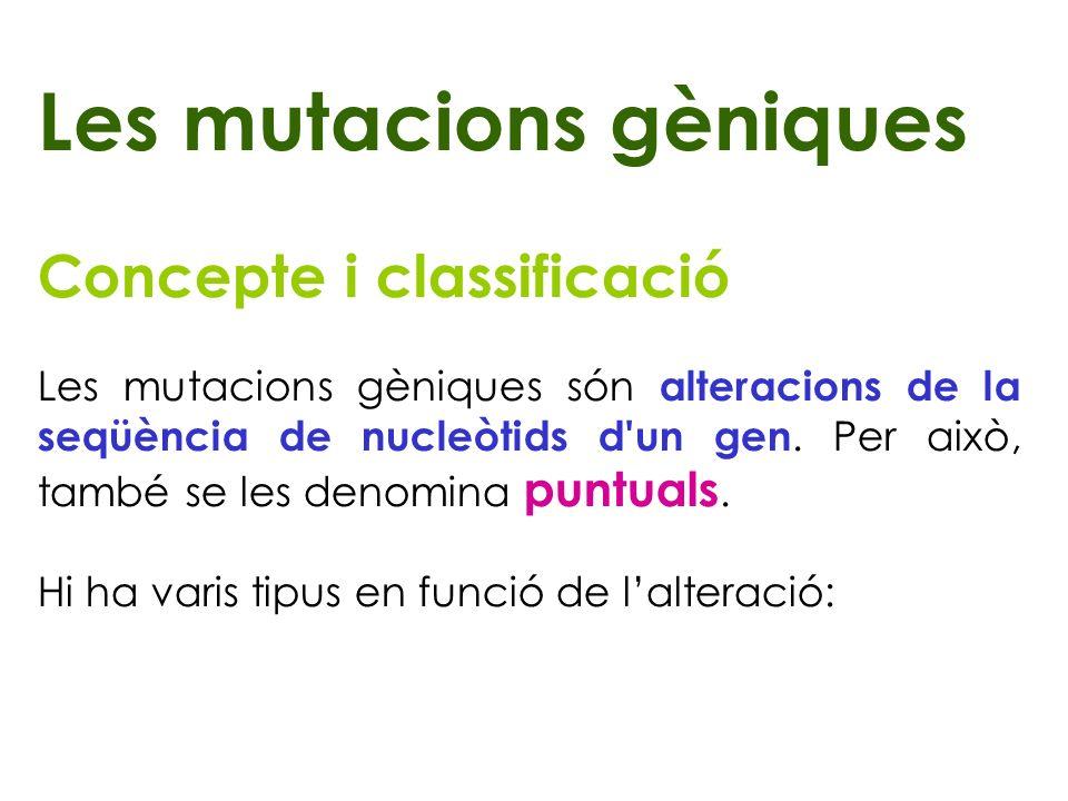 Les mutacions gèniques