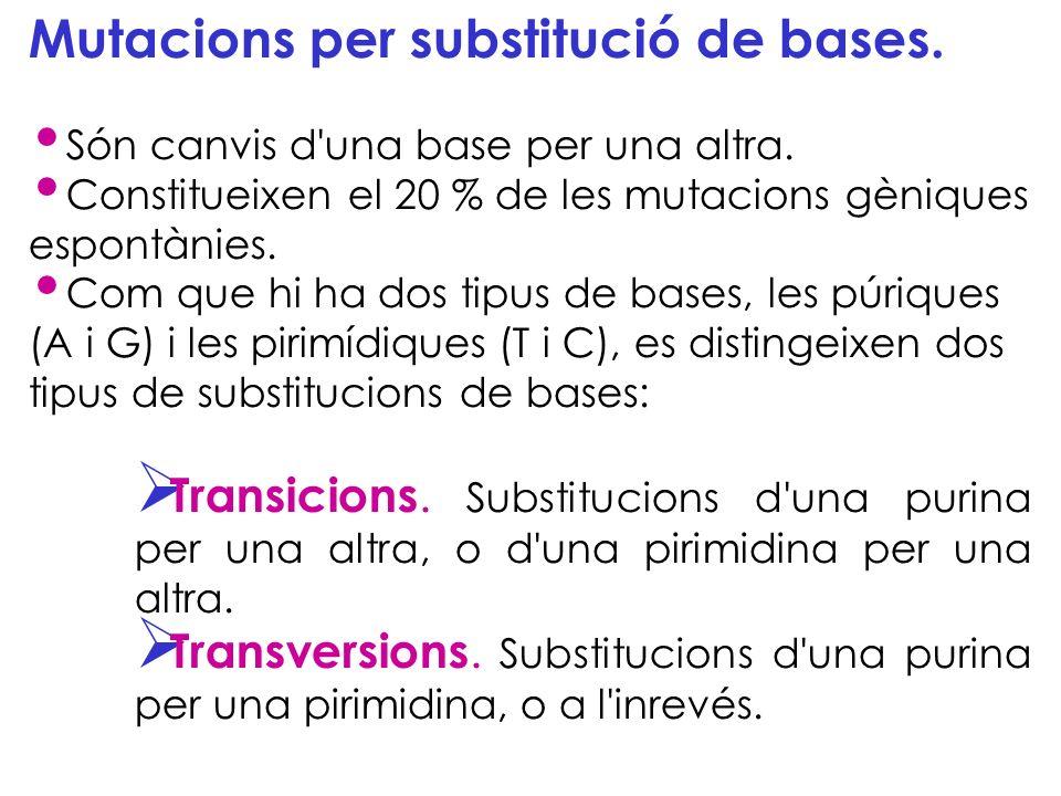 Mutacions per substitució de bases.