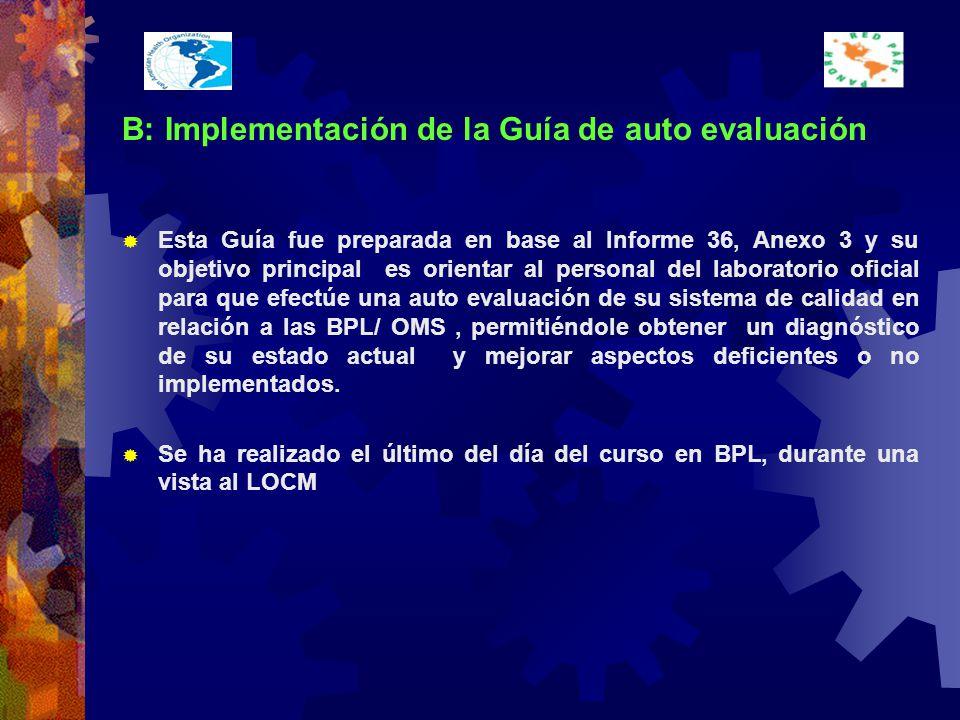 B: Implementación de la Guía de auto evaluación
