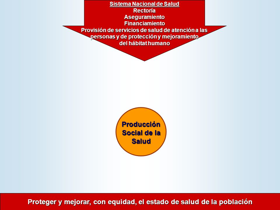 Sistema Nacional de Salud Producción Social de la Salud