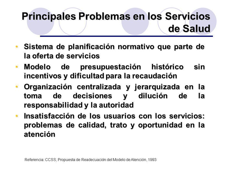 Principales Problemas en los Servicios de Salud