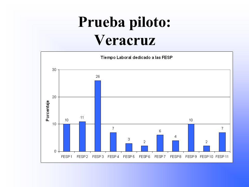 Prueba piloto: Veracruz
