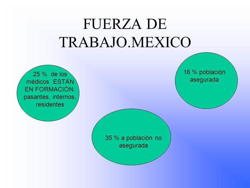 FUERZA DE TRABAJO.MEXICO