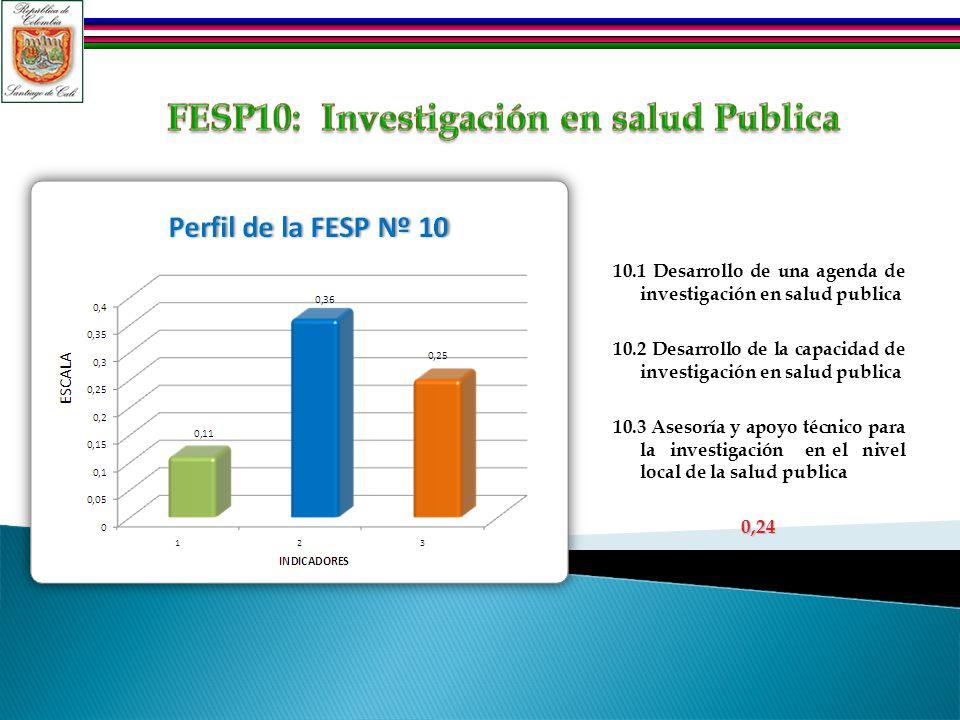 10.1 Desarrollo de una agenda de investigación en salud publica