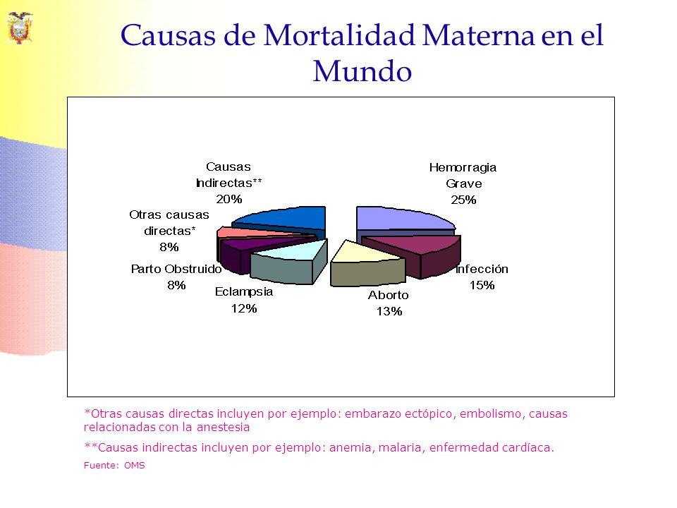 Causas de Mortalidad Materna en el Mundo