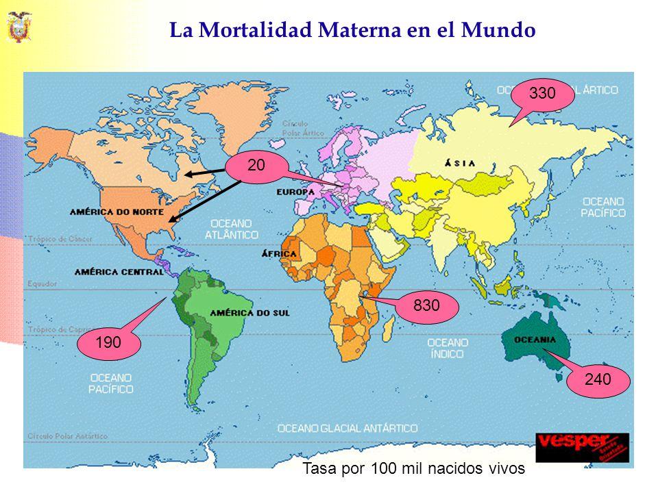 La Mortalidad Materna en el Mundo