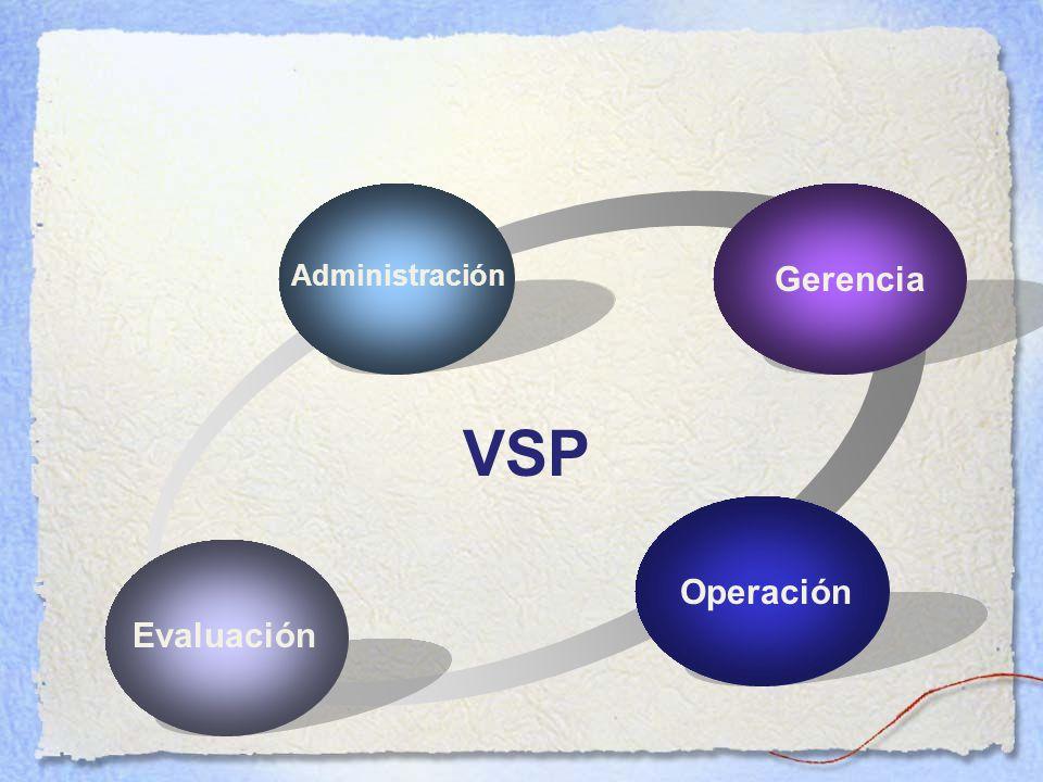 Administración Gerencia VSP Operación Evaluación