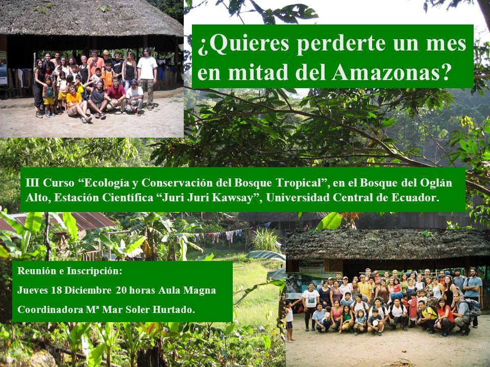 ¿Quieres perderte un mes en mitad del Amazonas