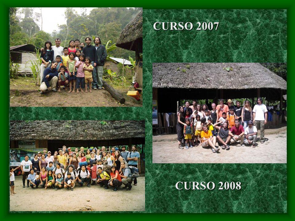 CURSO 2007 CURSO 2008
