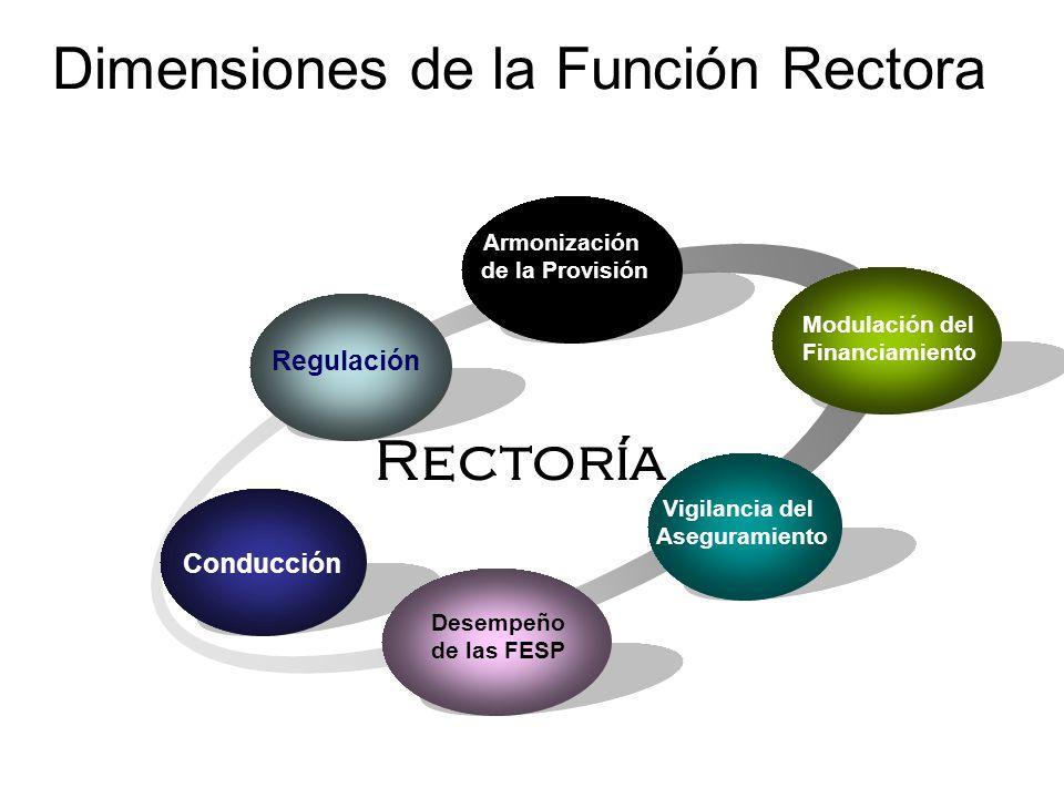 Dimensiones de la Función Rectora