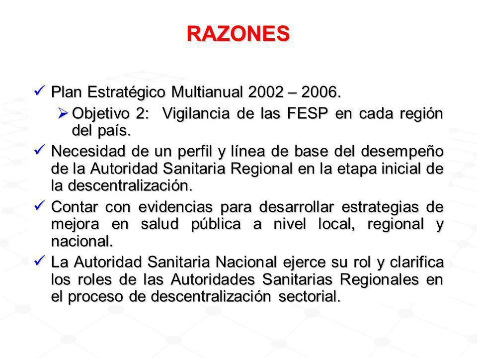 RAZONES Plan Estratégico Multianual 2002 – 2006.